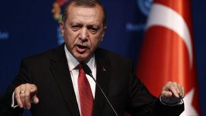 Turkiet president Recep Tayyip Erdoğan eftersträvar ett strakt presidentstyrt system i Turkiet. Den nya lagen som häver parlamentsledamörernas åtalsimmunitet anses ge honom större möjlighet att göra sig av med ledamöter som motsätter sig hans planer