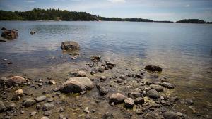 Meri matalan veden aikaan kesäkuussa, rantakivet ja levät paljastuneina.