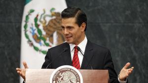 Mexikos president Enrique Peña Nieto säger att han vill förhandla om alla tvistefrågor med USA. Peña Nieto talade till diplomater i presidentens palats Los Pinos, i Mexico city