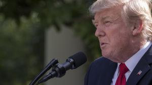 Donald Trump i Washington den 26 juni 2017