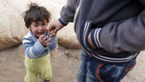 Syriskt barn gråter i flyktingläger i  Bab Al-Salama i norra Syrien.