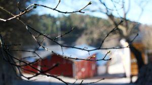 Vår i Borgå