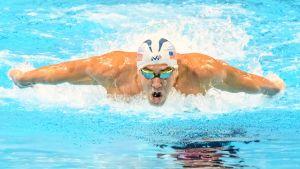 Phelps och ledecky i fler os grenar