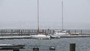 Segelbåtar i hamn på Åland.