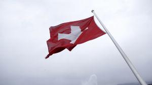 Schweiz flagga, ett vitt kors på en röd bakgrund.