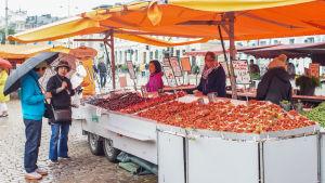 Torgstånd som säljer grönsaker och frukter på Salutorget.