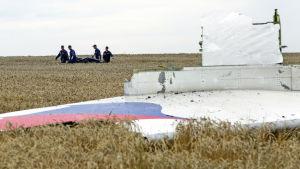 Det malaysiska passagerarplanet MH17 med 298 personer ombord skjöts ner över rebelkontrollerat område i östra Ukraina den 19 juli år 2014