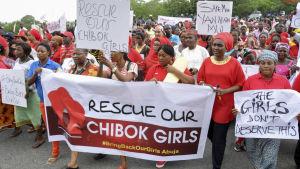 Demonstranter vill att regeringen gör mera för att hitta de kidnappade flickorna