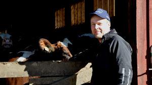 Bjarne Mara står framför en öppning till sin ladugård, bakom staketet står flera kor.