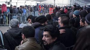 Flyktingar köar vid social- och hälsovårdstjänsten i Berlin i december 2015.