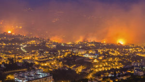 Skogsbrand i Funchal, Madeira.