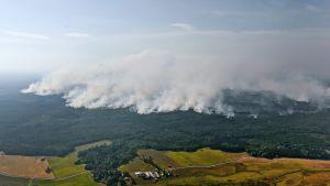 Stora skogsbränder i Sala i Sverige 2014.