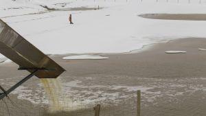 Talvivaara börjar släppa ut sitt spillvatten