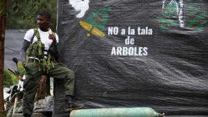 En Farc-rebell står vakt vid julfirande i bergstrakterna i sydvästra Colombia den 24 december 2016.