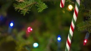 Julpynt i julgranen.
