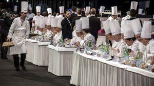 Kocktävling i Frankrike