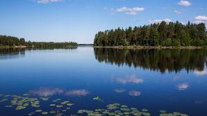 Kesä ja järvi