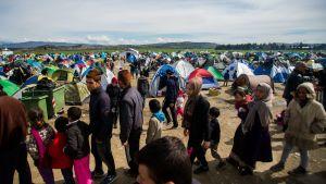 Flyktingläger i Grekland, nära gränsen mot Makedonien den 8 mars 2016.