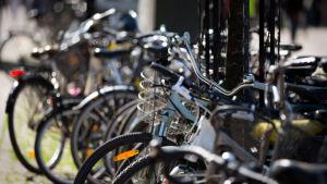 Polkupyöriä parkissa aurinkoisella säällä kesällä.