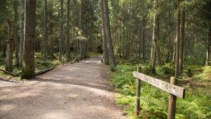 Nuuksionkansallispuisto