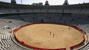Efter den sista tjurfäktningen i Barcelona 2011.