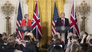Storbritanniens premiärminister Theresa May och USA:s president Donald Trump står vid varsitt podium.