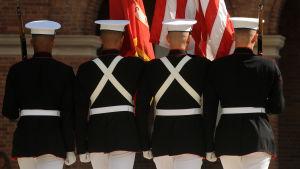 Amerikanska marinkårssoldater med ryggen mot kameran.