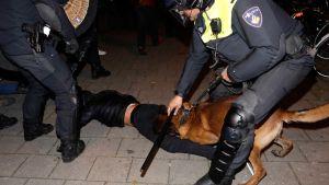 Det gick våldsamt till då nederländsk kravallpolis skingrade turkiska demonstranter i Rotterdam.