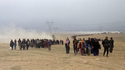 Arabstaterna oeniga om irak