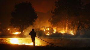 Brandman i släckningsarbete i Biguglia, på Korsika på måndag kväll. 24.7.2017
