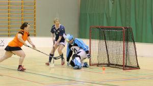 Trasslig situation framför innebandymålet. HaHys Virpi Sironen försöker sopa bollen i mål.