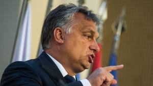 Ungerns premiärminister Viktor Orban vid en presskonferens den 4 september.
