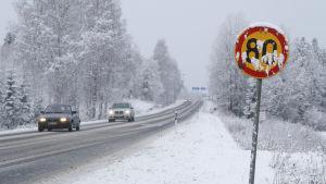 Bilar kör längs en snöig väg