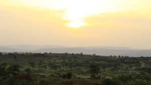 Flyktingosättningen Nakivale i Uganda