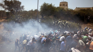 Kravaller vid Tempelberget i Jerusalem.