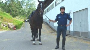 polishäst, ridande polis