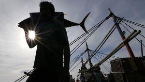 Tonfisk i filippinsk hamn