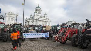 Jordbrukarnas traktorer framför Helsingfors Domkyrka
