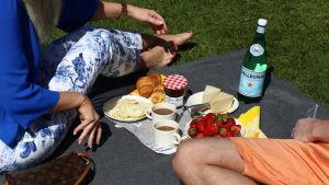 Vänner har picnic i parken.