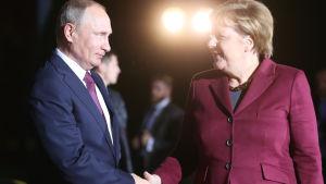 Rysslands president Vladimir Putin skakar hand med Tysklands förbundskansler Angela Merkel.