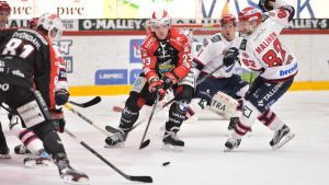 Sport-HIFK