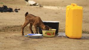 killing dricker vatten i norra uganda