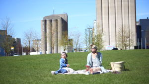 Familj har picnic på gräset.