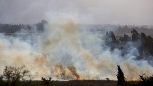 En brand efter att raketer som avfyrats från den syriska delen av Golanhöjderna den 20 augusti landade i norra Israel uran att orsaka personskador.