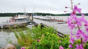 Lovisa gästhamn vid Skeppsbron.