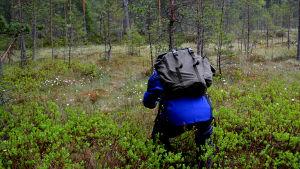 En deltagare i skogsterapin fotograferar på en myr