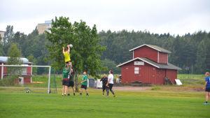 Rugbyspelare på gräsplan. Akseli Peltomäki i gult lyfts upp av två andra så han kan ta i bollen som en spelare kastar.