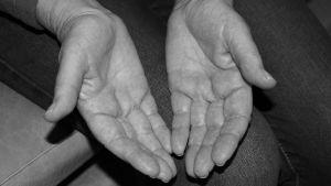 Eva Magnussons händer