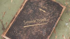 Boken Seitsemän veljestä.