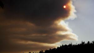 Skogsbränder skapar rökmoln i Portugal.